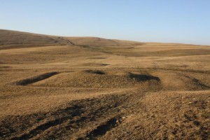 Central Kazakh Steppe
