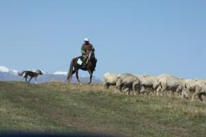 Assy Plateau, Kazakhstan