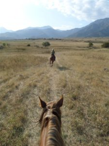 Horse riding in Aksu Jabagly nature reserve, Kazakhstan