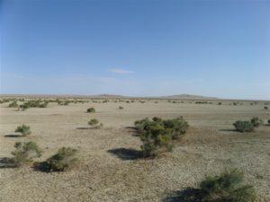 Bedding of former Aral Sea, Kazakhstan