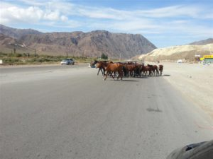 En Route in Kyrgystan